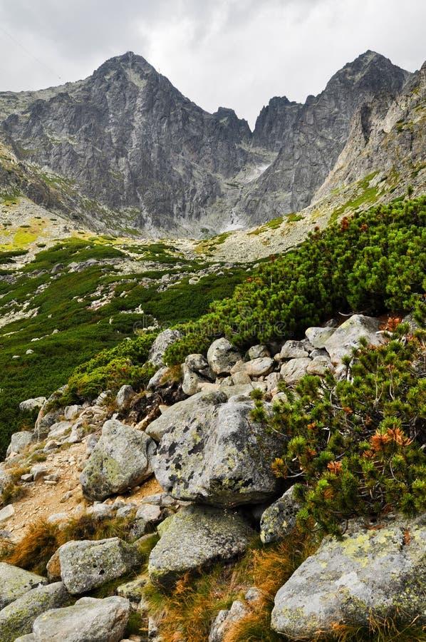 Mountain View elevado de Tatra fotos de stock