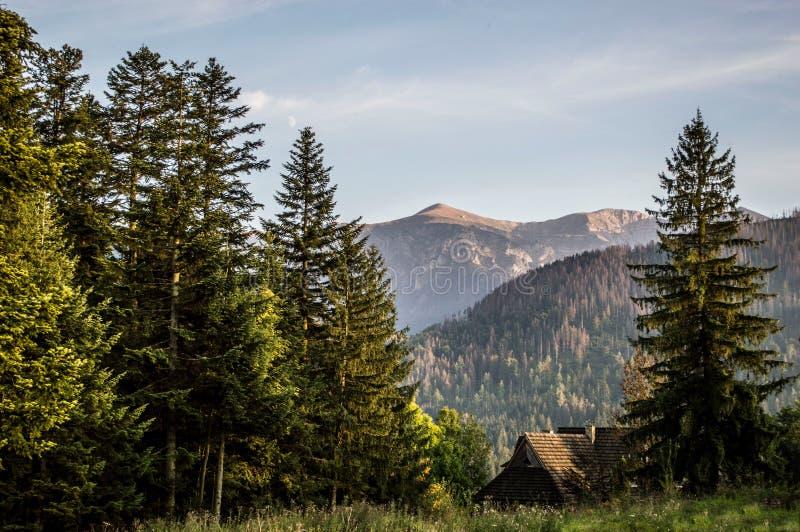 Mountain View em montanhas polonesas de Tatra imagem de stock