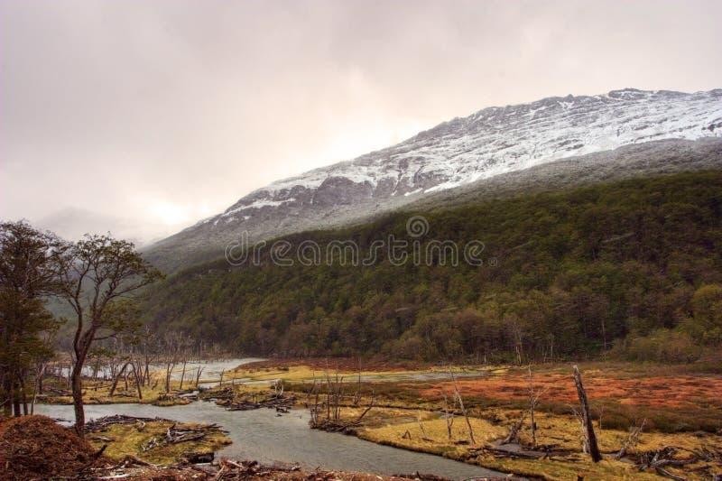 Mountain View em Tierra del Fuego fotografia de stock royalty free