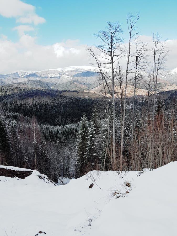 Mountain View en la estaci?n de esqu? Bukovel, C?rpatos, Ucrania foto de archivo libre de regalías