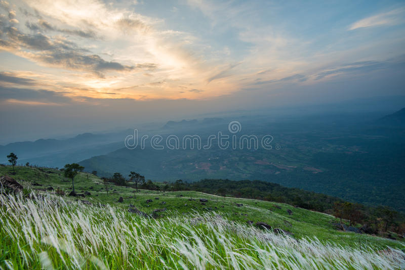 Mountain view. With flower grass White and beautiful sky and clouds stock images