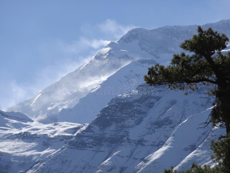 Mountain View himalayano, area di annapurna, fotografie stock