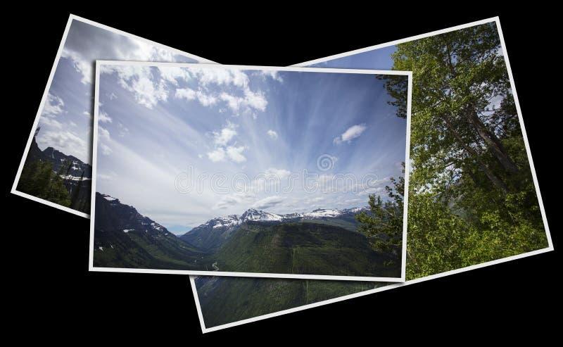 Mountain View i glaciärnationalpark royaltyfri fotografi
