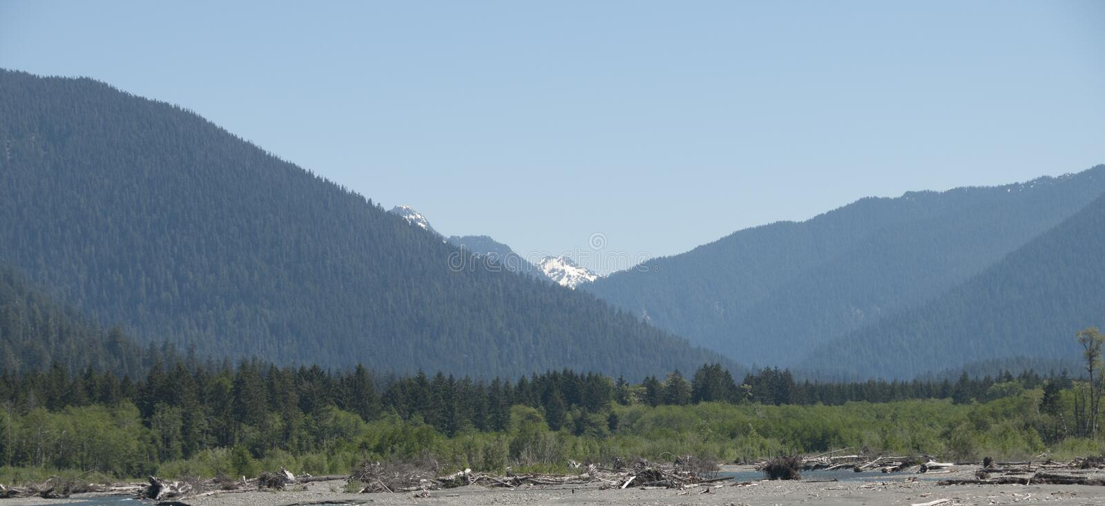 View of Mount Olympus. Mountain view of Mt. Olympus, Olympic Peninsula, Washington State, United States. Driftwood on Rialto Beach in foreground royalty free stock images