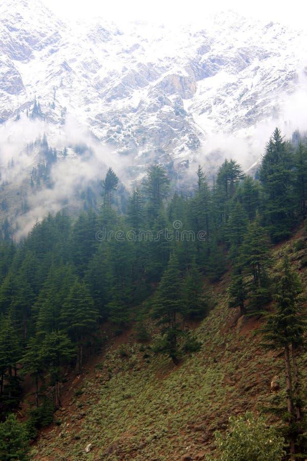 Mountain View Naran fotografie stock libere da diritti