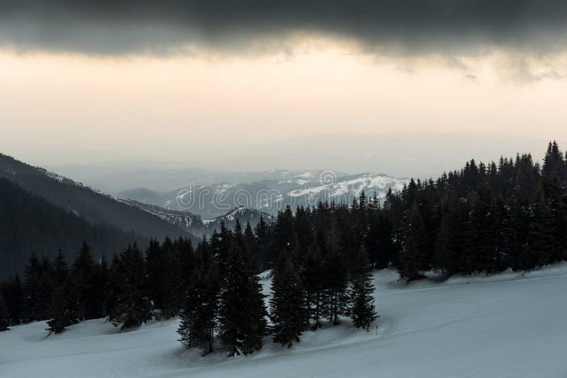Mountain View Nevado, Kopaonik, Serbia fotografía de archivo