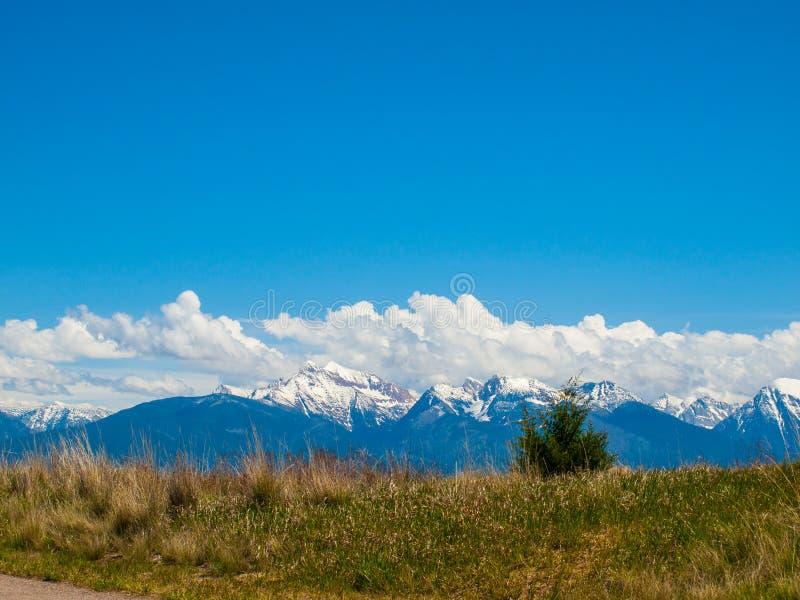 Mountain View od Krajowego żubra schronienia obrazy royalty free