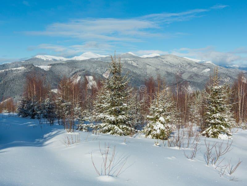 Mountain View pittoresco di mattina di inverno dal giovane pendio alpino della montagna di Skupova della foresta della betulla e  immagini stock libere da diritti