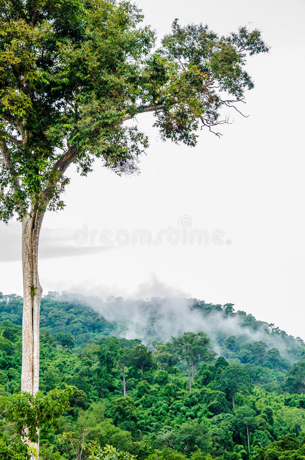 Download Mountain stock photo. Image of outdoor, beautiful, stone - 32463942