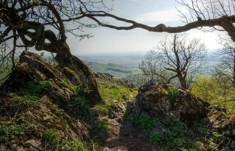 Mountain View von Rocky Path stockfotografie