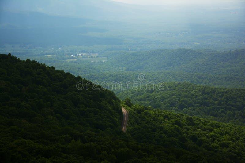 Mountain View y camino forestal fotos de archivo