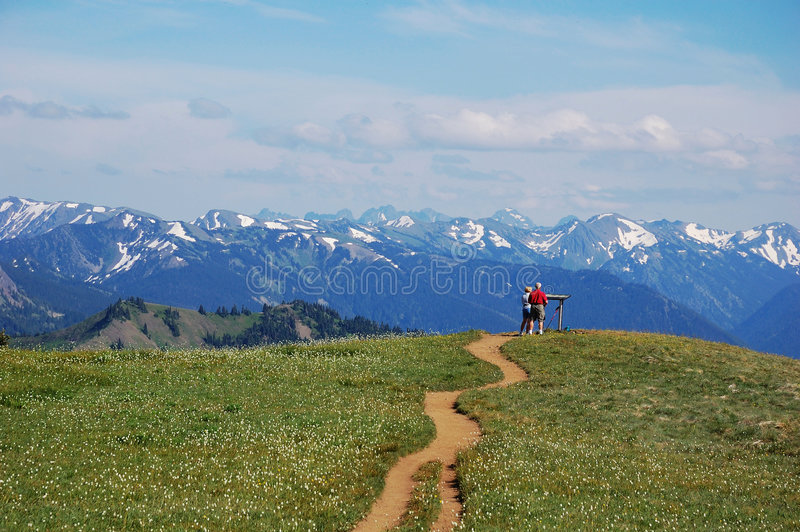 Mountain viewpoint. In the summit, olympic national park, washington, usa royalty free stock image