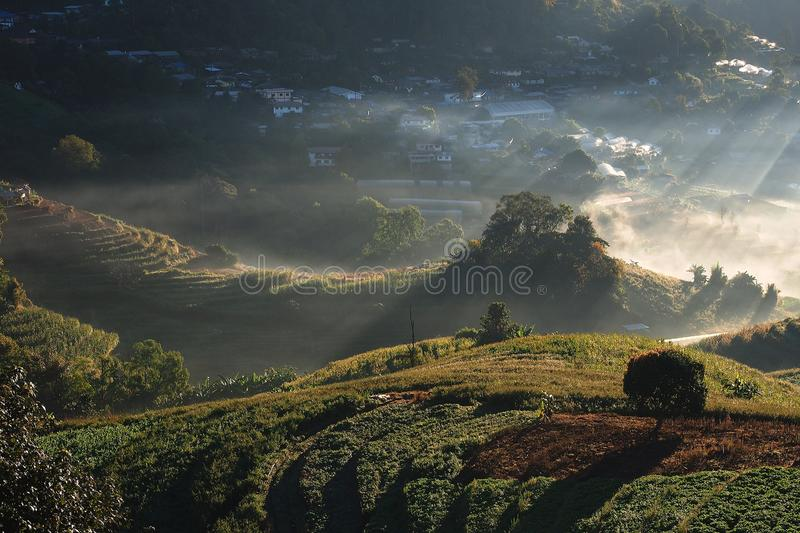 mountain village in the morning time northern of thailand stock photography