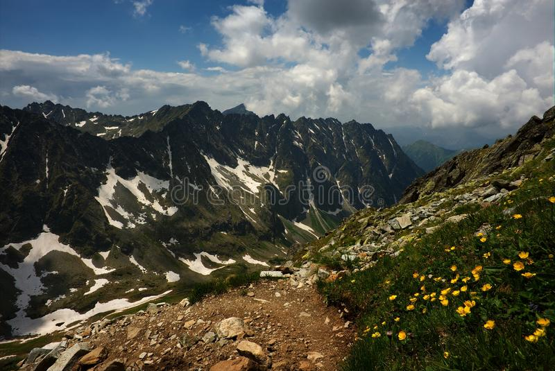 Mountain walking path with yellow flowers royalty free stock image