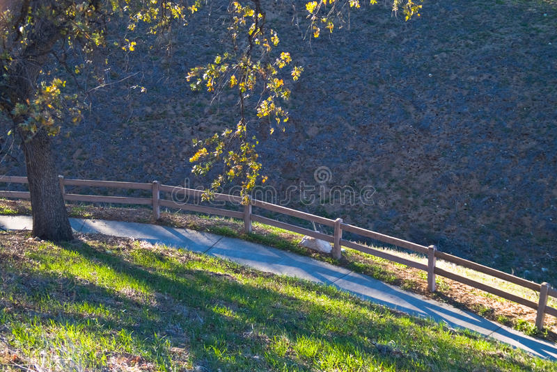 Mountain walkway with railing and fall tree stock image