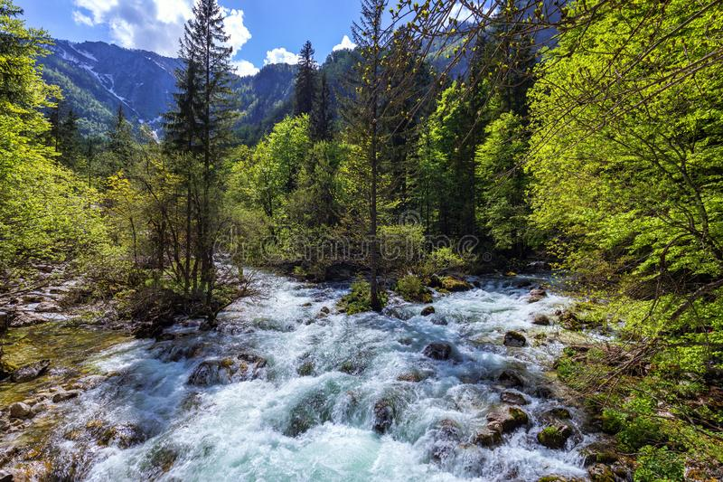 Mountain wild river landscape. River valley in mountains. Wild mountain river panorama. Small waterfall in forest stream. Long. Exposure. Fast water stream in stock photo