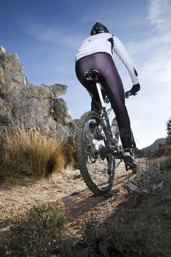 Mountainbike fotos de stock royalty free