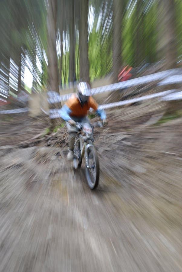 Free Mountainbike Stock Photo - 5652760