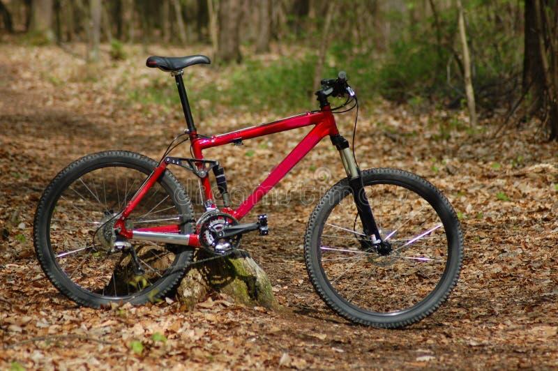 mountainbike fotografia stock libera da diritti