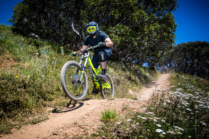 Mountainbike-Reiter an Mt Buller stockfotos