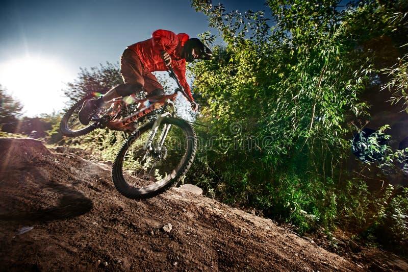 Mountainbikecyklist som av rider vägen royaltyfri foto