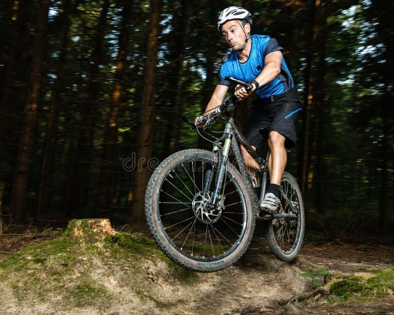 Mountainbiker 图库摄影