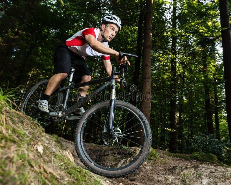 Mountainbiker 库存图片