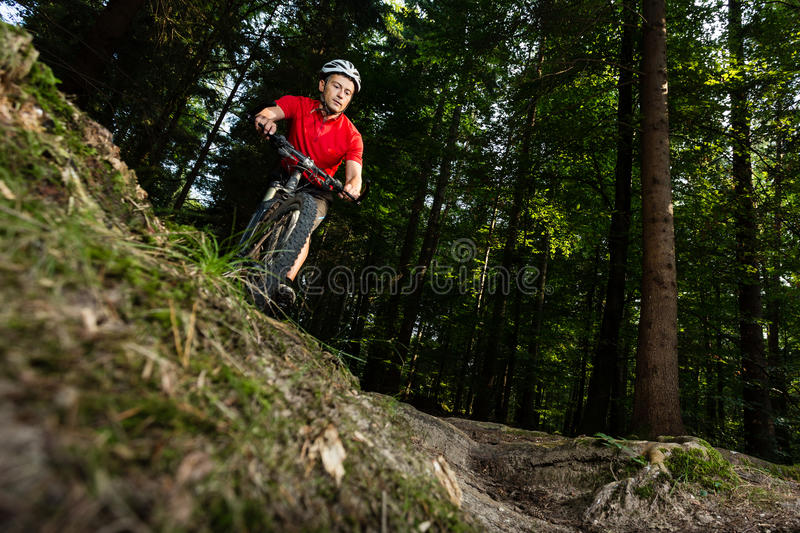 Download Mountainbiker stock photo. Image of healthy, cycling - 26464982