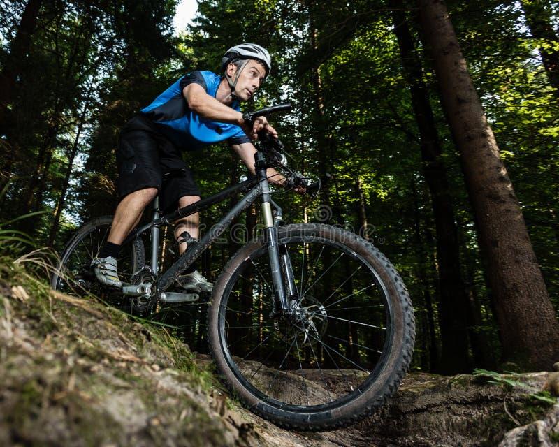 Mountainbiker 免版税图库摄影