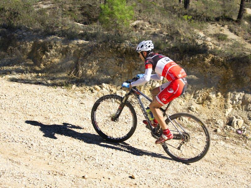 Mountainbiker fotos de archivo