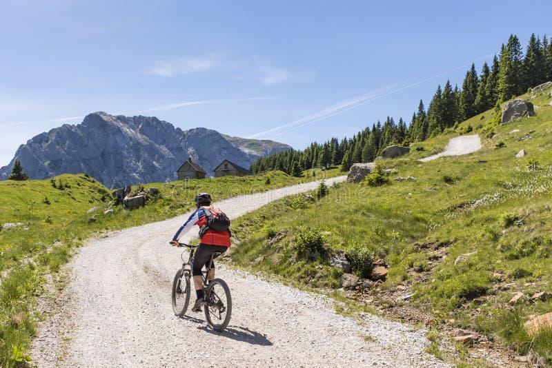 Mountainbiker dans des Alpes de Carnic avec la vue à la montagne Rosskofel image libre de droits