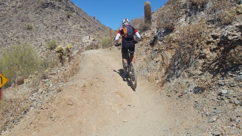 Mountainbiker, der aufwärts in die Wüste reitet lizenzfreie stockfotos