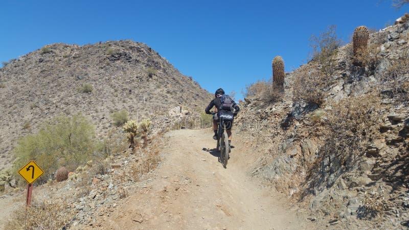Mountainbiker, der aufwärts in die Wüste reitet lizenzfreies stockfoto