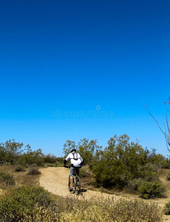 Mountainbiker, der aufwärts reitet lizenzfreie stockfotos