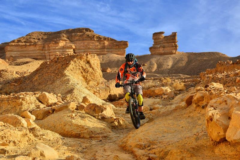 Mountainbiker in einer Wüste lizenzfreie stockfotos