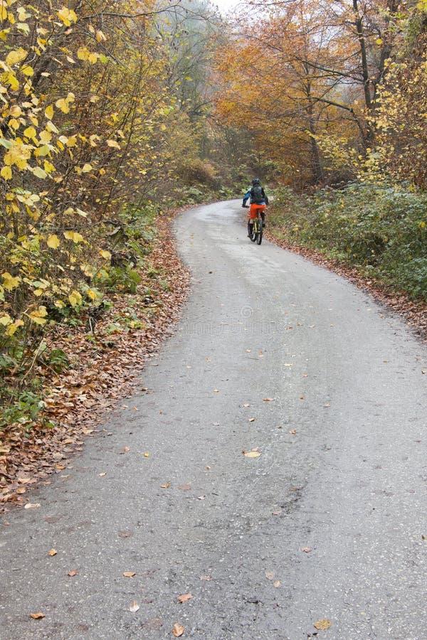 Mountainbiker fährt Fahrrad lizenzfreie stockfotos