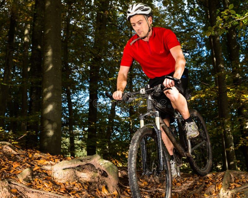 Download Mountainbiker I Ett Sluttande Arkivfoto - Bild av cirkulera, mänskligt: 27281930