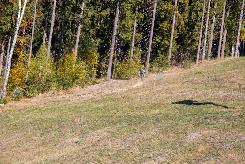 Mountainbiker sur une descente par la forêt photos libres de droits
