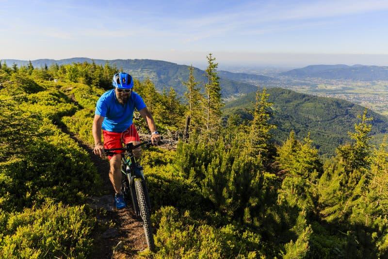 Mountainbikerreiten auf Fahrrad im Sommergebirgs-Wald-landsca lizenzfreie stockfotos