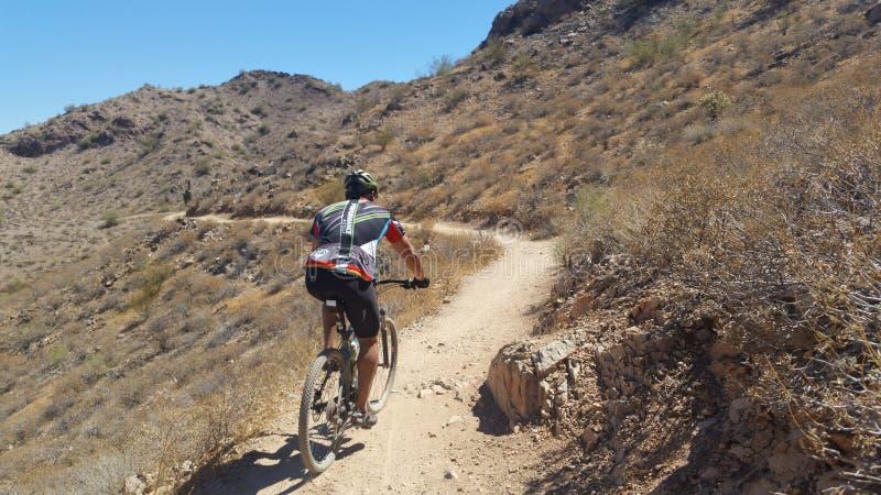 Mountainbikerreiten in der Wüste stockfotos
