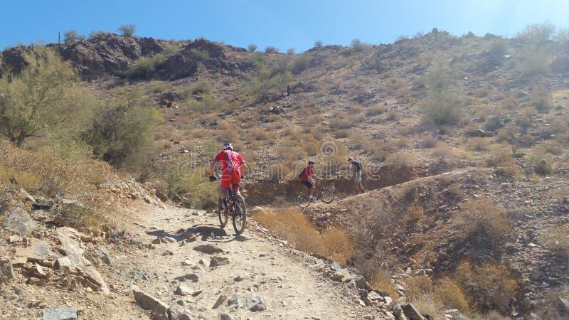 Mountainbikerreiten in der Wüste lizenzfreies stockfoto