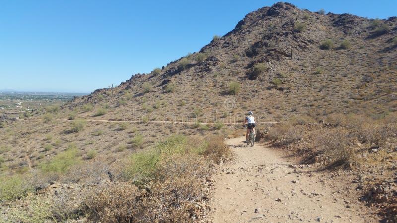 Mountainbikerreiten in der Wüste stockfotografie