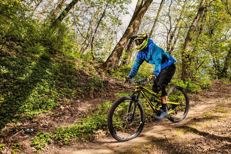 Mountainbikeryttare royaltyfria bilder