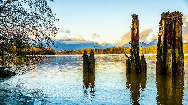 Mountainn view over the Fraser River in British Columbia, Canada. Beautiful view of the Fraser River on a sunny winter afternoon as seen from the historic royalty free stock photos