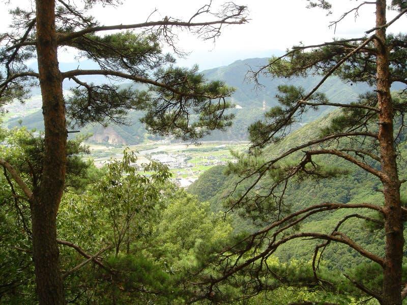 Mountainnagano royaltyfri fotografi