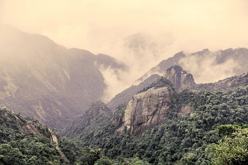 Mountainous Forest Landscape in China royalty free stock photography