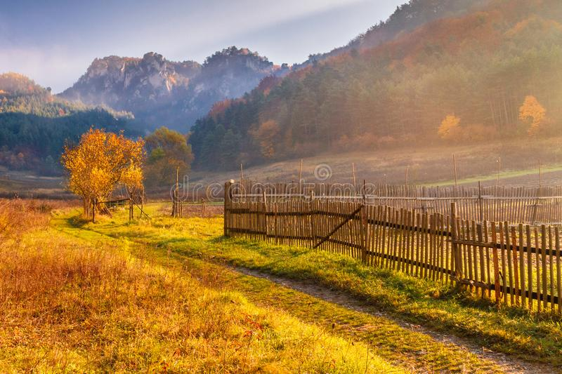 The mountainous landscape in autumn colors. royalty free stock image