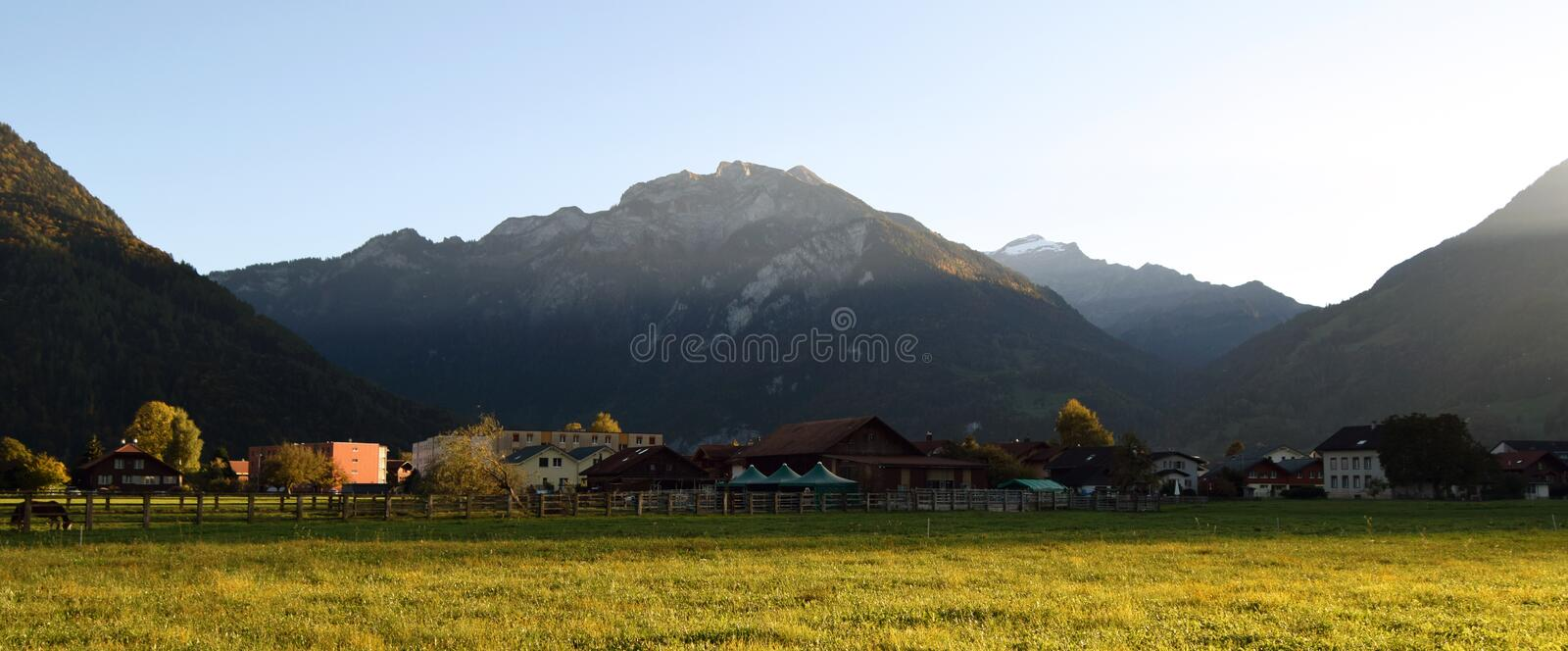 Landscape with grass, mountains, houses, trees and horses royalty free stock images