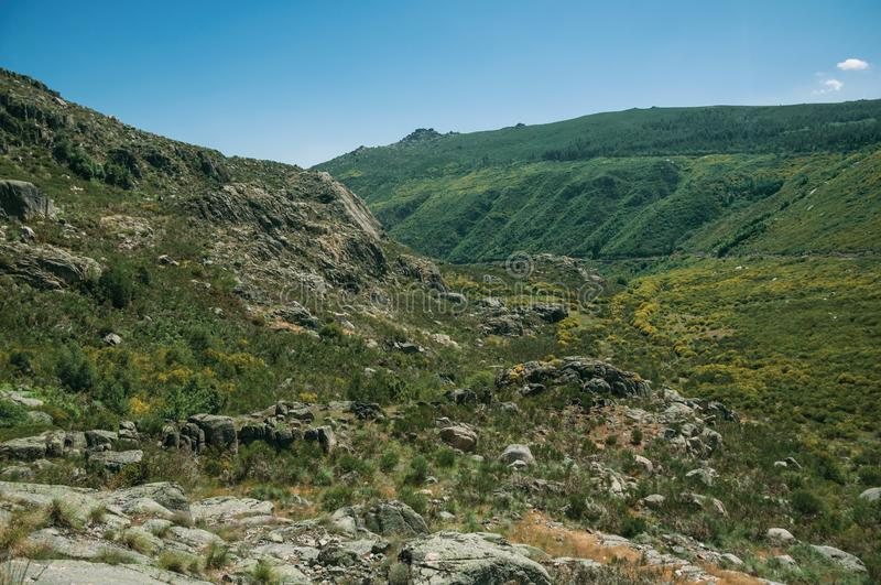 Zezere River valley. Mountainous landscape with rocky cliffs covered by green bushes in a sunny day, at the highlands of Serra da Estrela. The highest mountain stock images