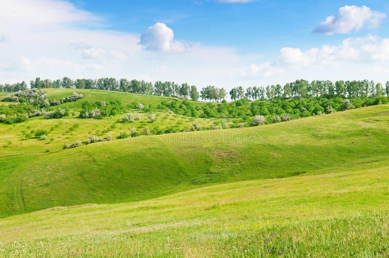Download Mountainous terrain stock image. Image of outdoor, farm - 32056443